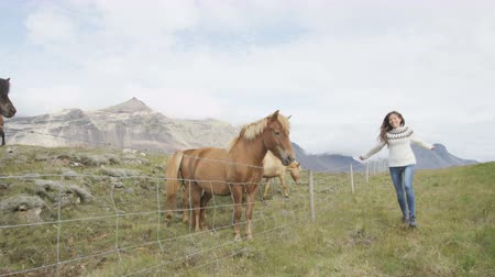 pulóver : Icelandic horses - happy woman and horse on Iceland. Girl in sweater running joyful and cheerful going horseback riding smiling in beautiful nature on Iceland. RED EPIC 90 FPS.
