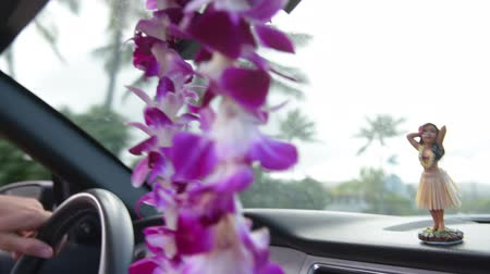 přístrojová deska : Driving car on Hawaii travel with Hula doll dancing on dashboard and lei during road trip. Man driver behind steering wheel. Dostupné videozáznamy