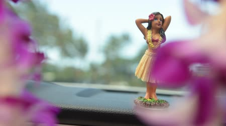gösterge paneli : Hawaii travel car - Hula doll dancing on dashboard and lei during road trip.