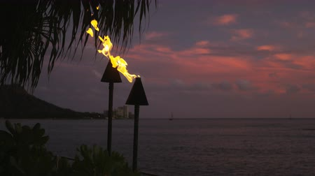 havaiano : Torch fire flames burning in Hawaii sunset sky by palm trees. Beautiful slow motion torches on Hawaiian Waikiki beach, Oahu. RED EPIC SLOW MOTION