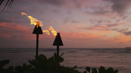 остров : Torch fire flames burning on Waikiki Beach on Oahu, Hawaii at sunset sky by palm trees. Beautiful slow motion torches on Hawaiian beach. RED EPIC SLOW MOTION. Стоковые видеозаписи