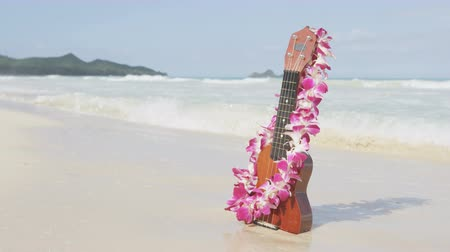 havaiano : Hawaii concept with ukulele and Lei on beach. Traditional Hawaiian instrument and flower wreath or garland on perfect sandy beach on Oahu.