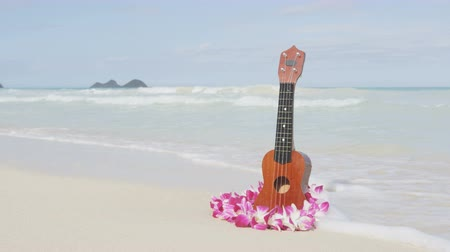 galo : Hawaii concept with ukulele and Lei on beach. Water washes away the ukulele as the ending.Traditional Hawaiian instrument and flower wreath or garland on perfect sandy beach on Oahu. Stock Footage