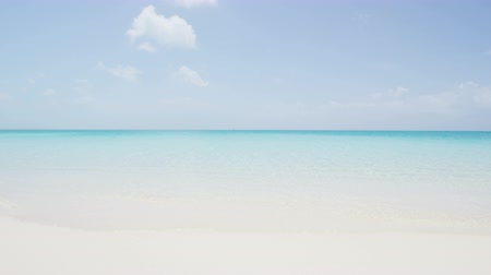 turkuaz : Caribbean beach - perfect paradise beach backround with turquoise ocean and white powder sand. Perfection
