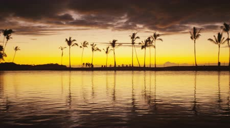 paraíso : Beach paradise sunset with tropical palm trees. Summer travel holidays vacation getaway colorful concept video from sea ocean water at Big Island, Hawaii, USA. People walking silhouette Vídeos