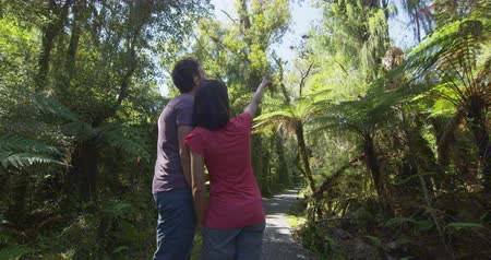 güneybatı : Hiking couple in New Zealand. People hiking in swamp forest nature landscape in Ship Creek on West Coast of New Zealand. Tourist couple pointing sightseeing tramping on South Island of New Zealand.