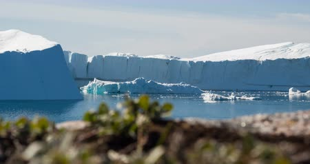disko bay : Greenland Iceberg landscape of Ilulissat icefjord with giant icebergs. Icebergs from melting glacier. Arctic nature. Stock Footage
