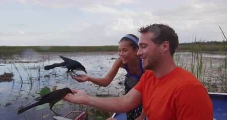 bird ecology : Everglades tourists on airboat ecotourism tour feeding birds in Everglades, Florida. Couple on vacation travel having fun in nature in Florida, USA