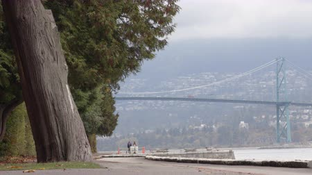 Ванкувер : Vancouver Stanley Park and Lions Gate Bridge by Vancouver Seawall, British Columbia, Canada