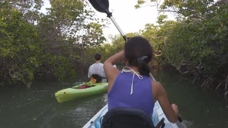 caiaque : Kayak - Kayaking couple on kayaking travel adventure in Florida kayaking near mangroves in the Keys, Florida, USA.