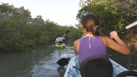 felnőtt : Kayak - Kayaking woman on kayaking travel adventure in Florida kayaking near mangroves in the Keys, Florida, USA.