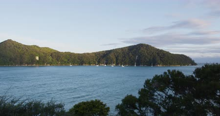 kivi : Abel Tasman National Park New Zealand Travel Vacation Beach Destination. Nature Landscape view of the Anchorage from Abel Tasman Coast Track, South Island, New Zealand Stok Video