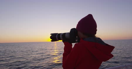 кит : Iceland tourist photographer on harbour cruise and whale watching in Reykjavik. Woman taking pictures with SLR camera enjoying travel vacation Стоковые видеозаписи