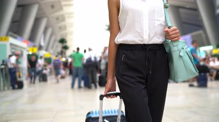 satysfakcja : Traveler going on train travel in business class on modern train station. Beautiful woman with hand luggage leaving on luxury transport. Businesswoman commuting to work in the morning. Wideo