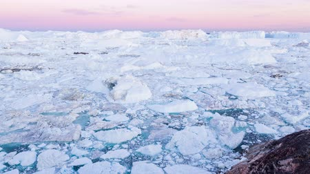 disko bay : Travel in arctic landscape nature with icebergs - Greenland tourist man explorer - tourist person looking at amazing view of Greenland icefjord - aerial video. Man by ice and iceberg in Ilulissat.