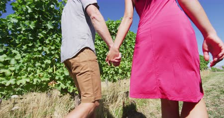 parreira : Vineyard people - Couple on wine tour holding hands while walking by grapevines. Man and woman are exploring vineyard together. They are spending leisure time in summer vacation.