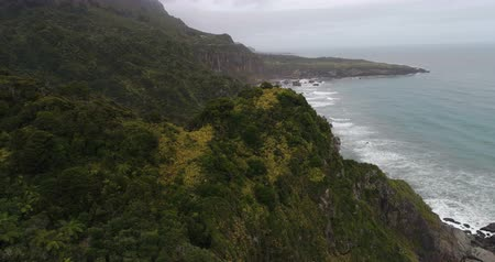 güneybatı : New Zealand aerial drone footage of nature landscape in Paparoa National Park, West Coast Region of South Island, New Zealand.