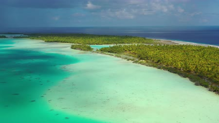 폴리네시아 : French Polynesia Tahiti aerial drone view of Fakarava atoll and famous Blue Lagoon and motu island with perfect beach, coral reef and Pacific Ocean. Tropical travel paradise in Tuamotus Islands.