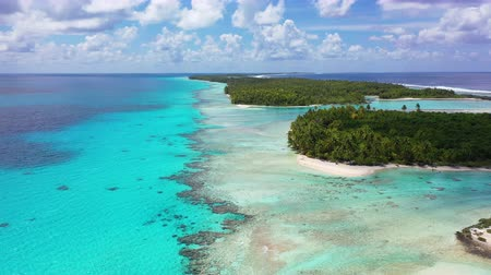 Полинезия : Drone aerial video of Rangiroa atoll island motu and coral reef in French Polynesia, Tahiti. Amazing nature landscape with blue lagoon and Pacific Ocean. Tropical travel paradise in Tuamotus Islands.