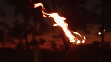 havaiano : Torch with fire and flames burning in Hawaii sunset sky by palm trees. Beautiful slow motion torches on Hawaiian Waikiki beach, Oahu. RED EPIC SLOW MOTION