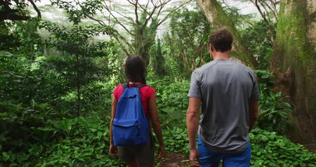 Оаху : Hiking people on travel vacation walk in rainforest on Oahu, Hawaii, USA. Young woman and man walking away from camera in SLOW MOTION shot on RED.