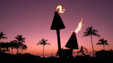 lanai : Torch with fire and flames burning in Hawaii sunset sky by palm trees. Beautiful torches on Hawaiian beach