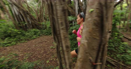 banyan : Running fitness sport woman in jogging in forest by banyan tree training and working out living healthy active outdoor lifestyle training. Female trail runner, 59.94 FPS. Oahu, Hawaii, USA.