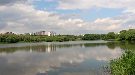 Pond in the summer. In the distance, the city is visible. Clouds hang over the pond, but the sun is shining. Sedge grows in the pond. Landscape.