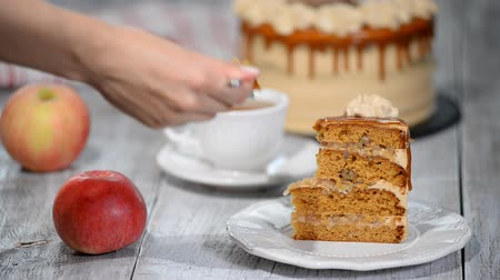 apple cake : Piece of Caramel Apple Cake with spices, cinnamon, creamy caramel in autumn style.