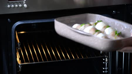 oven chicken : Female hands puts the chicken fillets in the oven. Step-by-step recipe. Stage preparation for cooking dishes. Series. Stock Footage