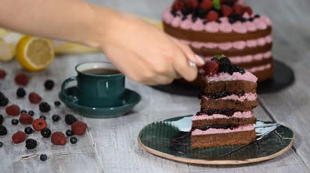 black raspberry : Chocolate cake with summer berries. Piece of chocolate cake with icing and fresh berry.
