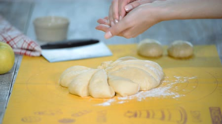 bun : Woman baker cutting raw dough roll into pieces on the table with flour.