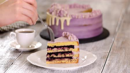 cheese piece : Piece of Summer Blueberry Cake