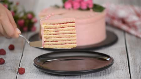 sajttorta : Portion of layered creamy fruit cake. Raspberry layer cake. Stock mozgókép