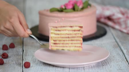 baked pudding : Piece of delicious layered cake with raspberry sauce. Stock Footage