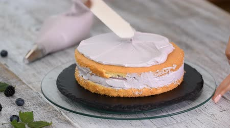 gąbka : Filling The Layer Of The Cake With Cream Coating Using Pastry Bag. Wideo