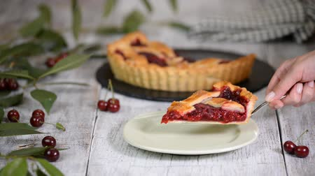мел : Slice of homemade cherry pie. Стоковые видеозаписи
