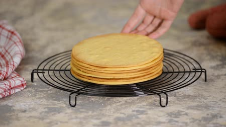 biszkopt : Freshly baked round shortbread layers for homemade cake on cooling rack.