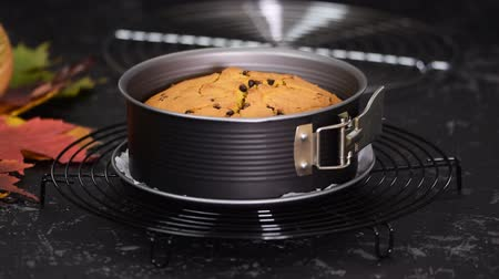 baked pumpkin : Freshly baked biscuit cake with chocolate chips close-up on the table. Stock Footage