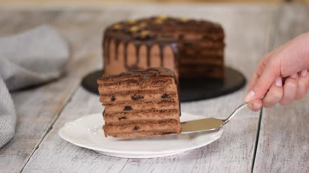 Piece of layer chocolate cake with prunes and rum.