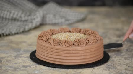 Delicious chocolate cake with nuts. Stok Video