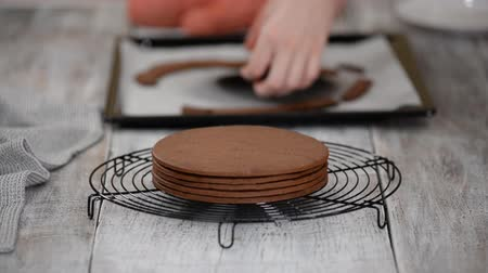 vla : Making Cake. Freshly Baked Chocolate Layers For The Cake on the Cooling Rack. Stockvideo