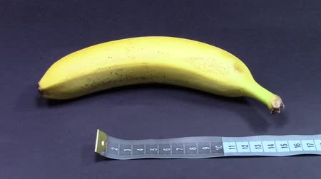 taboo : Banana fruit measured in length with tailor tape, on black background