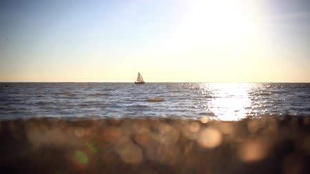 embarcadero : Romantic trip on luxury yacht sailing during the sea sunset. Holiday lifestyle landscape with skyline sailboat and seagull Stock Footage