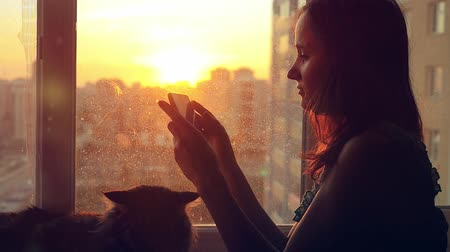 fur headphones : Attractive young woman uses mobile phone relaxing with her lovely Maine Coon cat at window with blurred city background at sunset in slowmotion Stock Footage