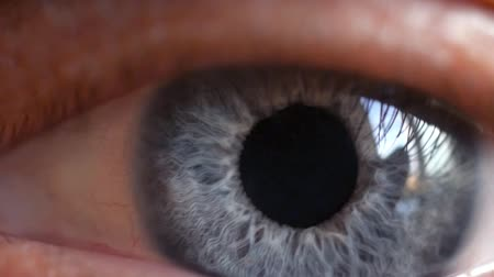 írisz : Macro shot of male human blue eye blinking in slow motion. 1920x1080 Stock mozgókép