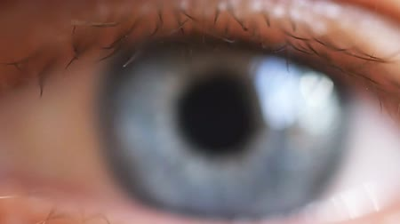 закрывать : Macro shot of male human blue eye in slow motion. 1920x1080, hd Стоковые видеозаписи
