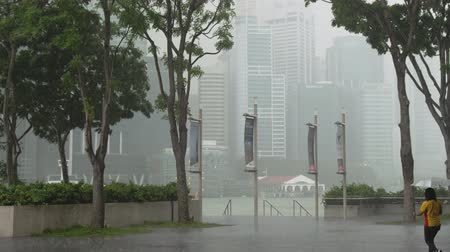 Singapore, 26 May 2018. Heavy rain in the center of Singapore. Woman with an umbrella is walking in the rain. Footage with sound. 3840x2160