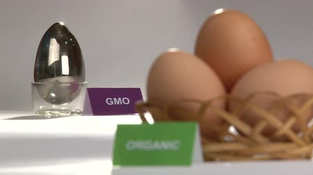 irony : Organic and Genetically modified food, eggs.