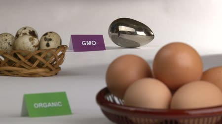 sağlıklı gıda : Organic and Genetically modified food, eggs.